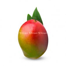 Mango- Nelam