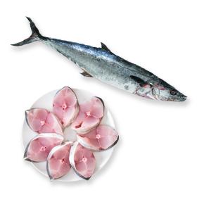 Sea Fish - Big